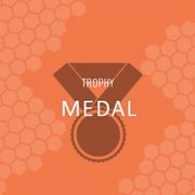 Medal & Pewter Tray